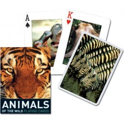 ANIMALS OF THE WILD, 55 cartas